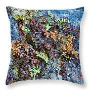 Ferns On Cliffside Throw Pillow