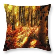 Ferns On The Forest Floor Throw Pillow