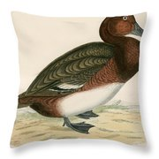 Ferruginous Duck Throw Pillow