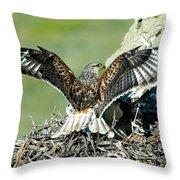 Ferruginous Hawk Male At Nest Throw Pillow