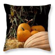 Festive Fall Throw Pillow