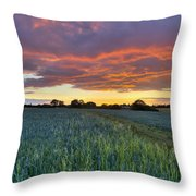 Field At Sunset Throw Pillow