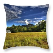 Field Bathed In Sunshine Throw Pillow