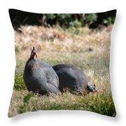Field Guinea Throw Pillow