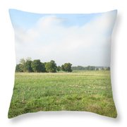 Field In France Throw Pillow