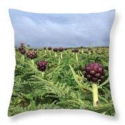 Field Of Artichokes Throw Pillow