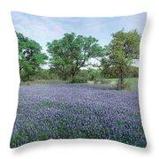 Field Of Bluebonnet Flowers, Texas, Usa Throw Pillow