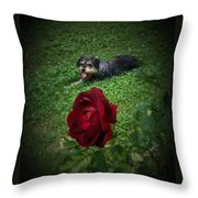 Field Of Clover Throw Pillow