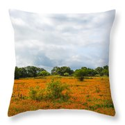 Field Ablaze Throw Pillow