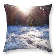 Field Of Frost Throw Pillow