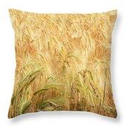 Field Of Gold - 3 Throw Pillow