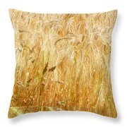 Field Of Gold 1 Throw Pillow