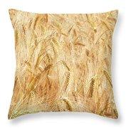 Field Of Gold - 4 Throw Pillow