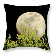 Field Of Gold By Moonlight Throw Pillow