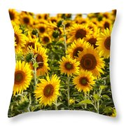 Field Of Happiness Throw Pillow