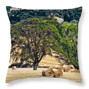 Field Of Hay Throw Pillow