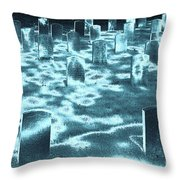 Field Of Lost Spirits Throw Pillow