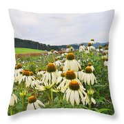 Field Of Medicine Perspective Throw Pillow