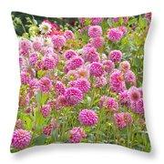 Field Of Pink Dahlias Throw Pillow