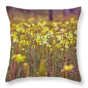 Field Of Pitcher Plants Throw Pillow
