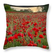 Field Of Poppies At The Lake Throw Pillow