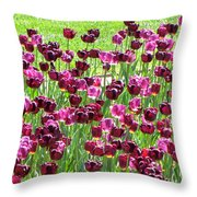 Field Of Purple Tulips 1 Throw Pillow