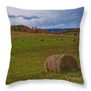Field Of Round Bales Throw Pillow