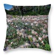 Field Of Seeding Flowers Throw Pillow