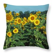 Field Of Smiley Faces Throw Pillow