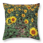 Field Of Sunflowers Throw Pillow by Adrian Evans