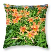 Field Of Tiger Lilies Throw Pillow