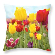 Field Of Tulip Flowers Against Blue Sky Throw Pillow