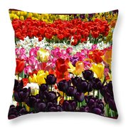 Field Of Tulips Ll Throw Pillow
