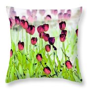 Field Of Tulips - Photopower 1492 Throw Pillow