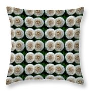 Field Of Wishes Throw Pillow