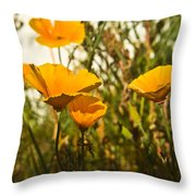 Field Of Yellow Poppies Throw Pillow