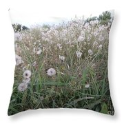 Field Of Youthful Dreams Throw Pillow by Joseph Baril
