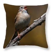 Field Sparrow Pictures 23 Throw Pillow