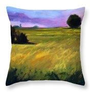 Field Textures Throw Pillow