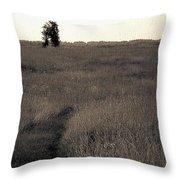 Field Ways Throw Pillow