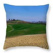 Field With Cypress Trees Throw Pillow