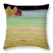Field With Four Trees Throw Pillow
