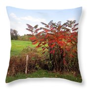Field With Sumac In Autumn Throw Pillow