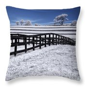 Fields And Fences Throw Pillow