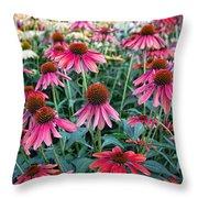 Fields Of Coneflower Throw Pillow