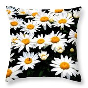 Fields Of Daisies Throw Pillow