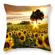 Fields Of Gold Throw Pillow