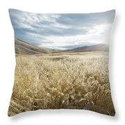 Fields Of Grass In Nevada Desert Throw Pillow