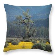 Fields Of Yellow Foxglove Throw Pillow