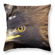Fierce Golden Eagle Throw Pillow